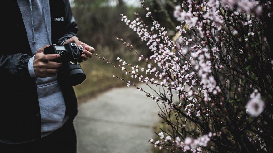 foto's, perfecte foto's, camera, fotografietips, tips, fotograferen