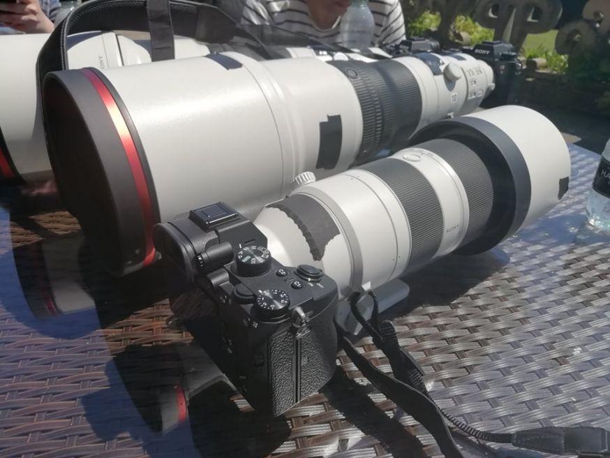 sony 200-600mm f/5.6-6.3 G OSS en 600mm f/4 GM OSS