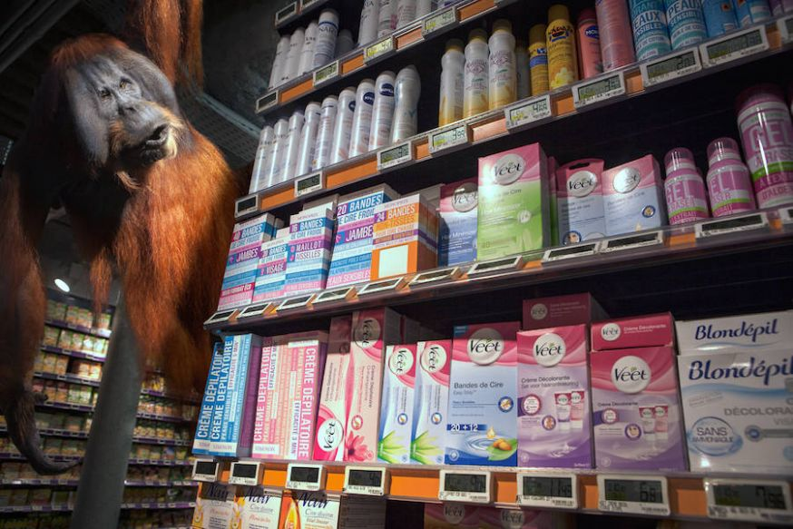 Wilde dieren in de supermarkt