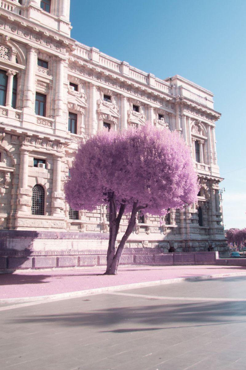 Rome in infrarood