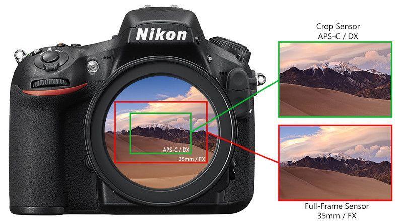 Het Verschil Tussen Nikon Fx Formaat En Dx Formaat Sensors