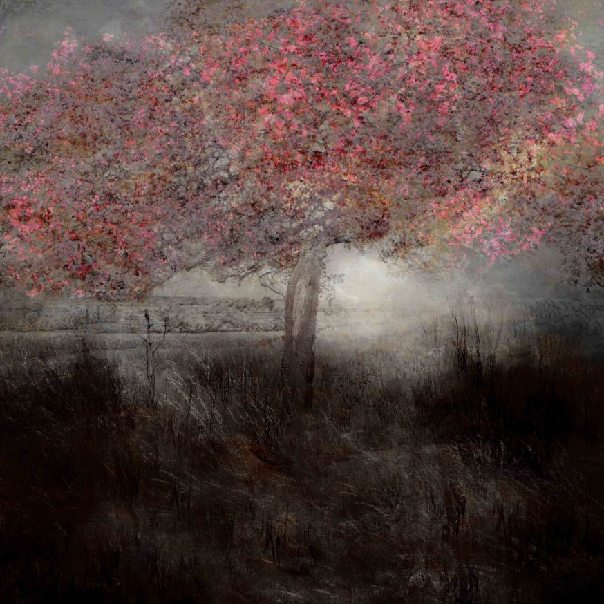 Saskia Boelsums - Landscape #109 - Courtesy Eduard Planting Gallery