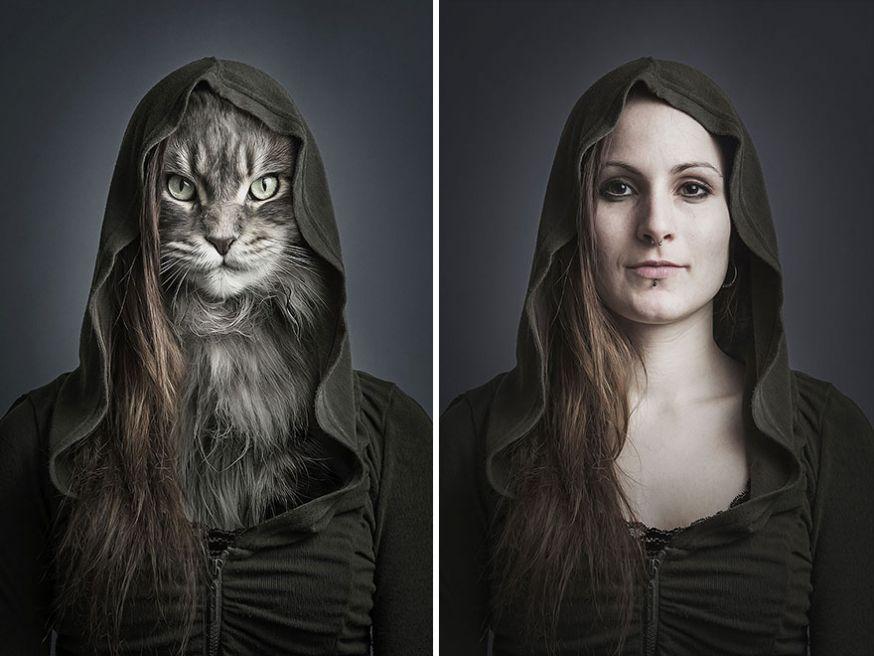 Katten worden één met hun baas