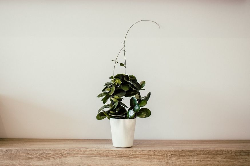 minimalisme fotografie, fotograferen van minimalisme, minimalisme, fotografie, tips
