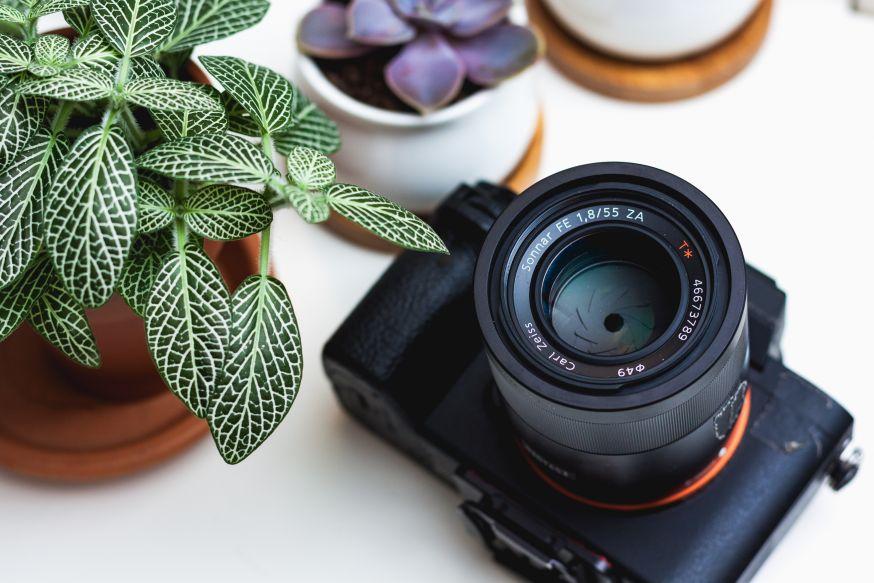 Fotograaf, tips, beginnende fotograaf, starter,