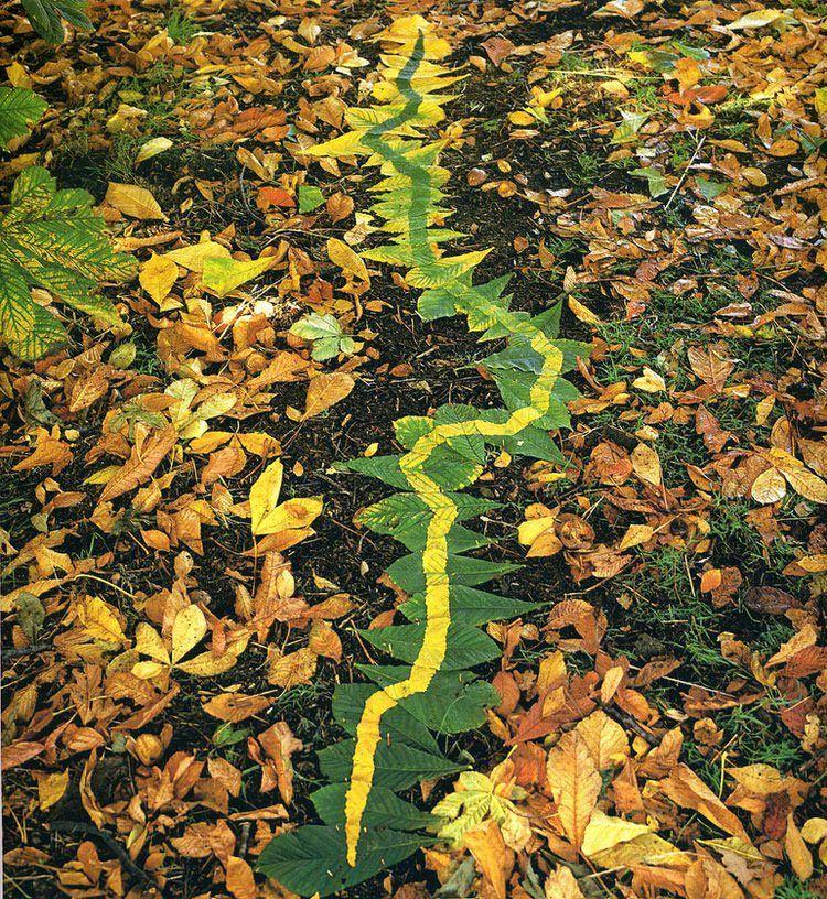 Kunstwerken van bladeren en takken