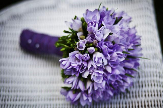 bloemen, bloem