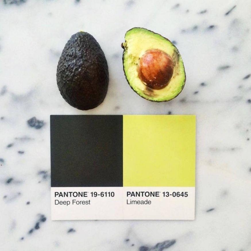 Kleurrijke pantone serie met eten