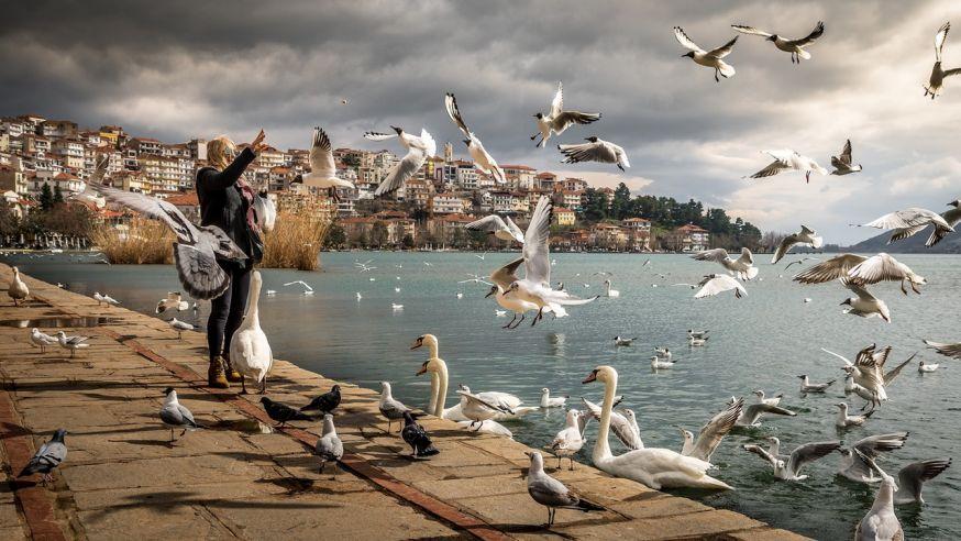 Jouw reisfoto's in het magazine? Stuur je mooiste reisfoto in en bemachtig een publicatie in digifoto Starter magazine!