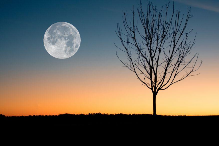 fotografie tips maan fotograferen