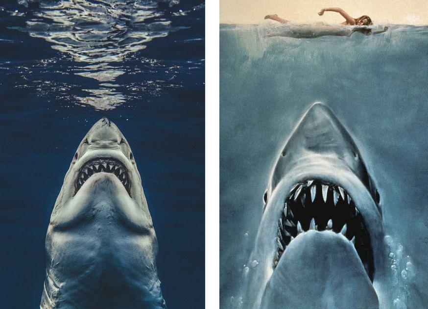 Fotograaf Jaws filmposter