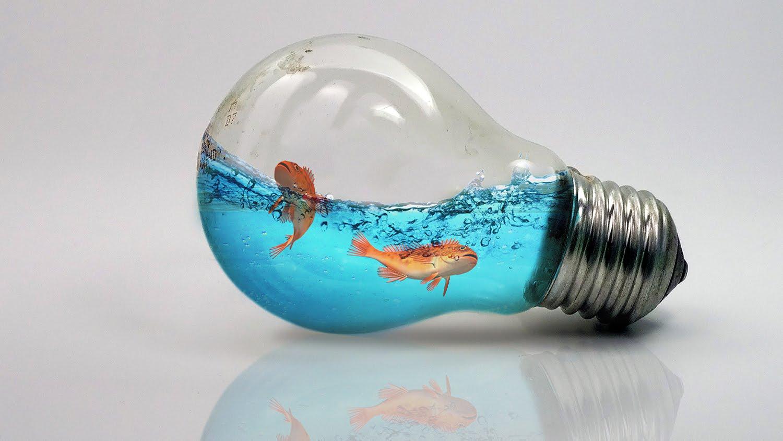 Leren Met Photoshop Een Vissenkom In Gloeilamp Maken